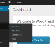 Noua interfata UI Wordpress