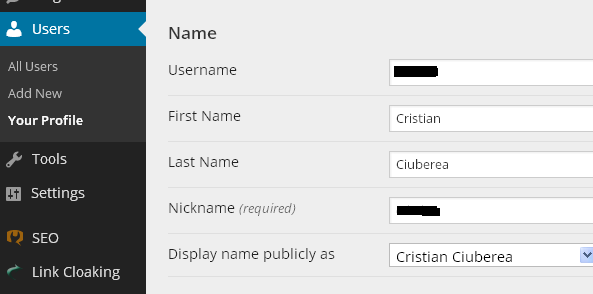 Modificare nume profil