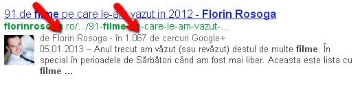 Florin_Rosoga